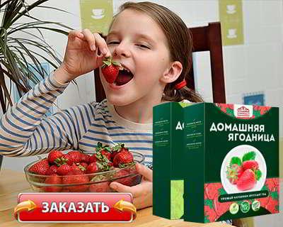Домашняя ягодница купить на официальном сайте