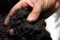 Гидрогель Гидрактив Плюс удерживает воду в почве.