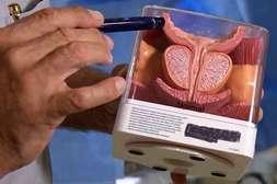 Средство Уретрикс восстанавливает здоровье простаты.