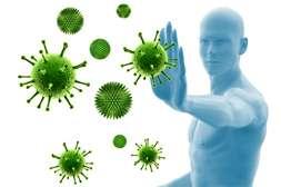 Состав Санацина вырабатывает иммунитет.