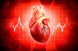 Тензитал стабилизирует тонус сердца.