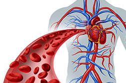 Улучшают состояние сосудов и сердечной мышцы капсулы LifeControl.